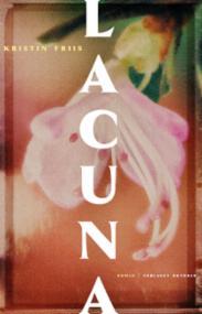 Lacuna : roman