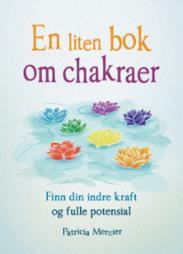 En liten bok om cha...