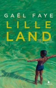 Lille land : roman
