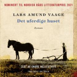 Det uferdige huset : roman
