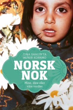 Norsk nok : mine, dine eller våre verdier