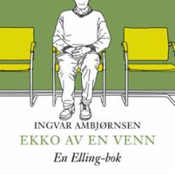 Ekko av en venn : roman